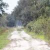 Walking or Bike trail