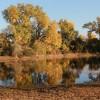 Mormon Island Lake