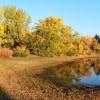 Mormon Island Pond