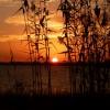 Sunset at Waveland