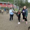 At reindeer park
