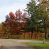 Fall colors at Campground